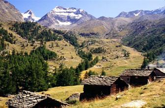Alp Saas Fee