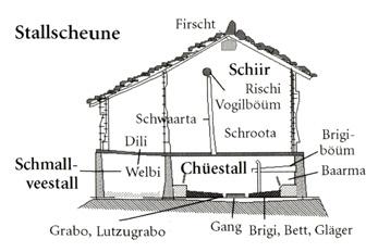 Stallscheune (Längsschnitt)