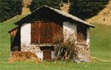 Viehstall Beispiel