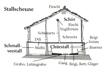 Stallscheune (Grundriss)