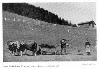 Avers: Bauer bei der Arbeit